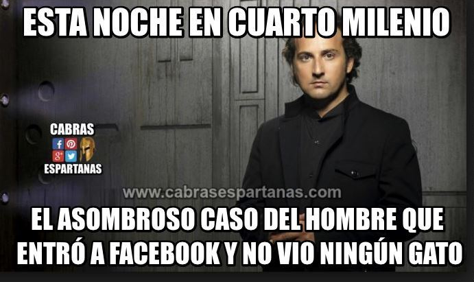 gatos en facebook